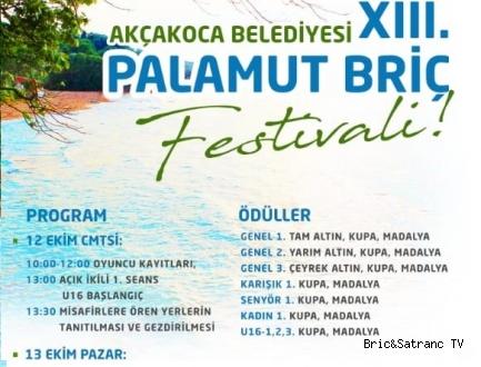 13.Akçakoca Palamut Briç Festivali Cumartesi başlıyor!